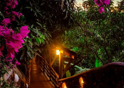 walkway-stone-flowers-sunset-veranda-kep