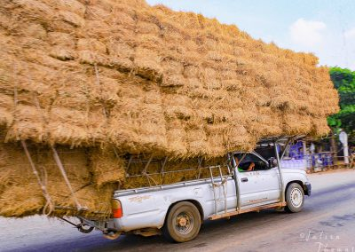 straw-bundle-car-customized-transportation