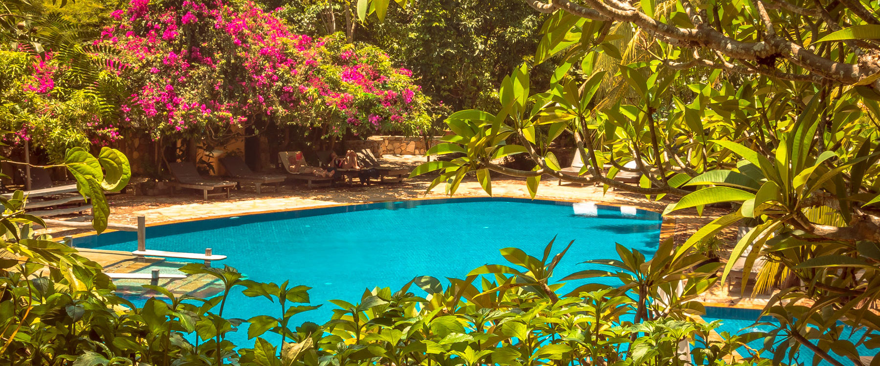View to The Secret and Garden Swimming Pool. An area with natural shade under the flowered tropical trees in Veranda Natural Resort, Kep - Cambodia.