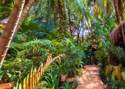 garden-hotel-quiet-trees-cambodia