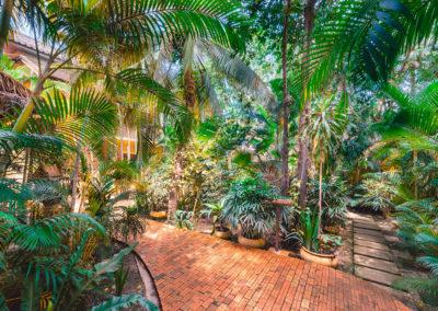 hotel-garden-quiet-trees-cambodia