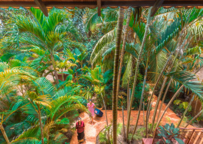 hotel-guests-garden-siem-reap